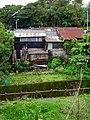 Tin Roof Houses 鐵皮屋 - panoramio.jpg