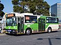 Tobus S-D333 green-arrows.jpg