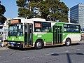 Tobus S-D333 green-arrows.jpg
