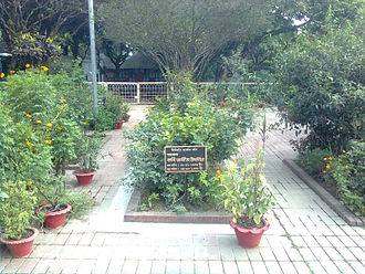 Jasimuddin - Tomb of Jasimuddin