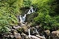 Torc Waterfall, Killarney National Park, Ring of Kerry (506628) (27657291164).jpg
