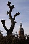 foto van Toren van het voormalige hoge huis Nieuwkoop