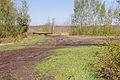 Totes Moor im LSG Schneerener Geest vor Neustadt am Rübenberg IMG 6809.jpg