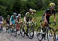 Tour de France 2015, valverde - contador (19875936099).jpg