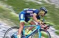 Tour de France 2017, minnaard (36164519885).jpg