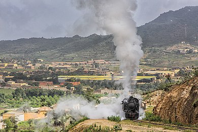 Steam train outside Asmara on the Eritrean Railway. Train Asmara Eritrea.jpg