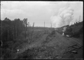 Train on the North Island Main Trunk Line near Ohakune. ATLIB 288522.png