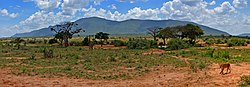 Tsavo east panorama.jpg