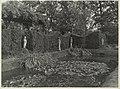 Tuin met vijver en beelden - Ginneken - 20325251 - RCE.jpg