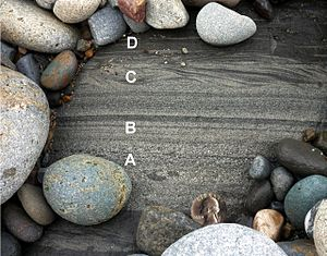 Bouma sequence - Image: Turbidite from Pigeon Pt Fm at Pescadero Beach, CA