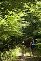 Two children hiking in the woods (8540597552).jpg