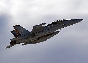 VAQ-138 - VAQ-138 EA-18G in 2011