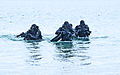 United States Navy SEALs 522.jpg