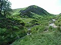 Upper reaches of Carding Mill Valley - geograph.org.uk - 462324.jpg