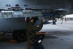 VMFA-122 Ordnance Marines keep Hornets armed in any weather 140903-M-RQ061-004.jpg