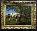 Vache qui se gratte, salon de 1859, huile sur toile, Constant Troyon (2).jpg
