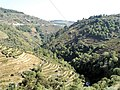 Vale do rio Sermanha - Boavista, Vila Marim - panoramio.jpg