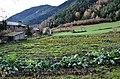 Vall de Sorteny (Ordino) - 42.jpg