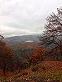 Valle del Genal 04.jpg