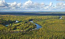 Vasiugan preteká tundrovým pásmom západosibírskej nížiny