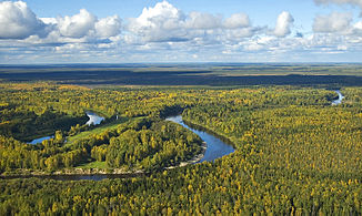 The Wassyugan river in Tomsk region, Siberia, view from the helicopter.
