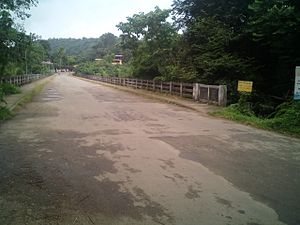 Ranni - Bridge near Vadasserikara