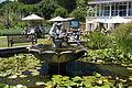 Ventnor Botanic Garden fountain in August 2011.JPG