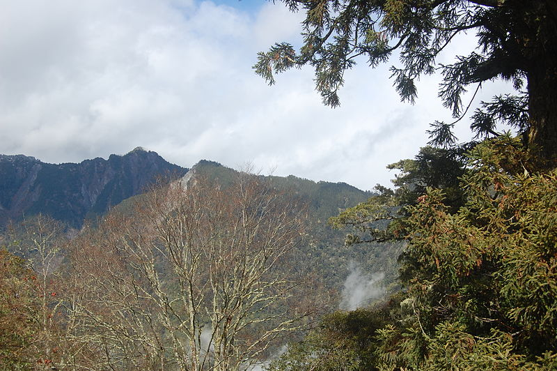 File:View From Near Bilyu Sacred Tree in Hehuanshan (5453372675).jpg