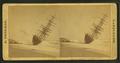 View of the W.F. Marshall wreck, by Freeman, J. (Josiah) 2.png