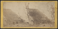 View up the River from the top of the Palisades, by E. & H.T. Anthony (Firm) 3.png