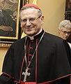 Visita de Cardenal Angelo Amato - 17792469768 (cropped2).jpg