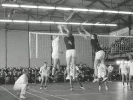 Bestand:Volleybal Nederland-Albanië.ogv