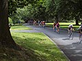 Volunteer Park Bike Race.jpg