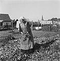 Vrouw tuiniert in moestuin, Bestanddeelnr 901-0053.jpg