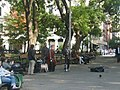Washington Square Park (WSTM Mossmen0067).jpg