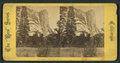 Washington Tower, 2200 feet high, from Robert N. Dennis collection of stereoscopic views.png