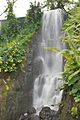 Waterfall in the Eden Project.jpg