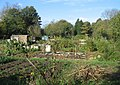 Well kept allotments - geograph.org.uk - 1079359.jpg