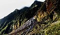 Westland National Park NZ (13901379599).jpg