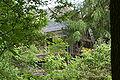 Wetter - Zeche Ver Trappe (Friederica) - 04 ies.jpg