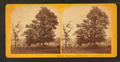 Where Gen. Lee surrendered, Appamattox, by Kilburn Brothers.png