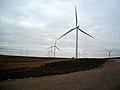 Whitelee Windfarm - geograph.org.uk - 1542085.jpg