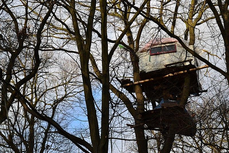 File:Widerstand im Blätterdach,Hambacher Forst,NRW.jpg