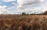 Wijnjeterper Schar, Natura 2000-gebied provincie Friesland 17.jpg