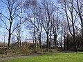 Wilhelminapark - Bosgang - Rijswijk - 2009 - panoramio.jpg