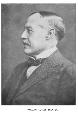 William Lutley Sclater.PNG