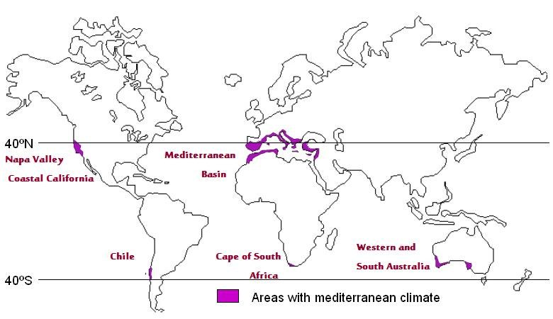 Wine regions with Mediterranean climates