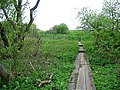 Wooden Walkway across an Area of Wetland - geograph.org.uk - 433294.jpg