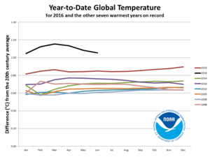 Global warming hiatus - Year-to-year global temperature of the hottest years on record