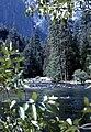 Yosemite1971.jpg